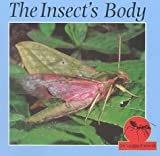 The Insect's Body, Lynn M. Stone, 1559163143