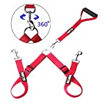 Double Dog Leash - Hapito Double Dog Leash with Detachable Handle - Adjustable Double Dog Walker, No Tangle Dog Leash Coupler, Training Leash for Walking Two Dogs (Red)