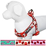 Blueberry Pet Soft & Comfy Step-in Glam Life of Ladybug with Flower Padded ...