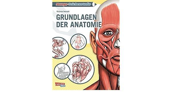 Manga-Zeichenstudio: Grundlagen der Anatomie: 9783551736857: Amazon ...