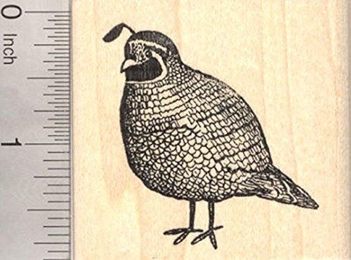 Quail Rubber Stamp, California Valley, State Bird of California