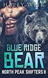 Blue Ridge Bear (North Peak Shifters Book 2)