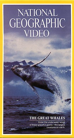 National Geographic's The Great Whales [VHS]