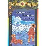 Danger sur la banquise