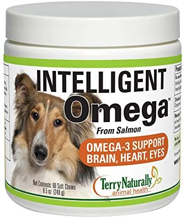 Terry Naturally Animal Health Intelligent Omega – 60 Soft Chews – Omega 3, Salmon Oil for Dogs, Promotes Brain, Heart Eye Health – Canine Only – 60 Servings
