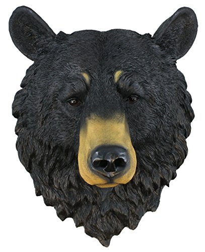 (Black Bear ~ Bust ~ Grandfather Mountain Large 17.5