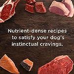 Rachael Ray Nutrish PEAK Natural Wet Dog Food 13