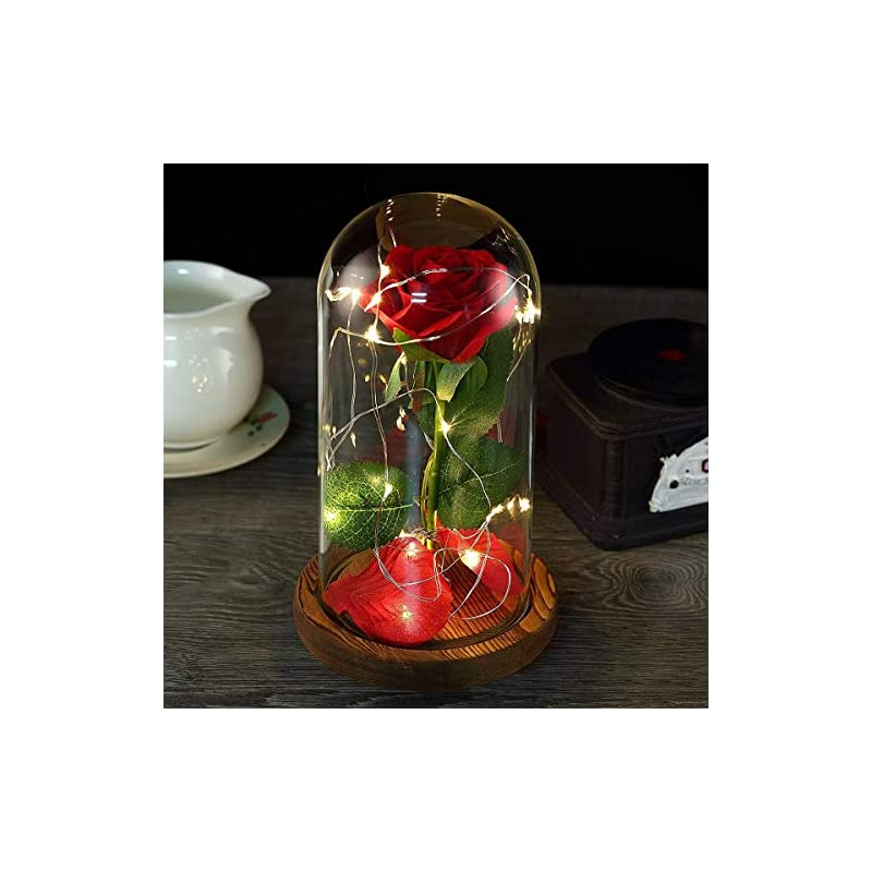 silk flower arrangements beauty and the beast rose, red silk rose with petals in a glass dome, rose for birthday, anniversary, wedding