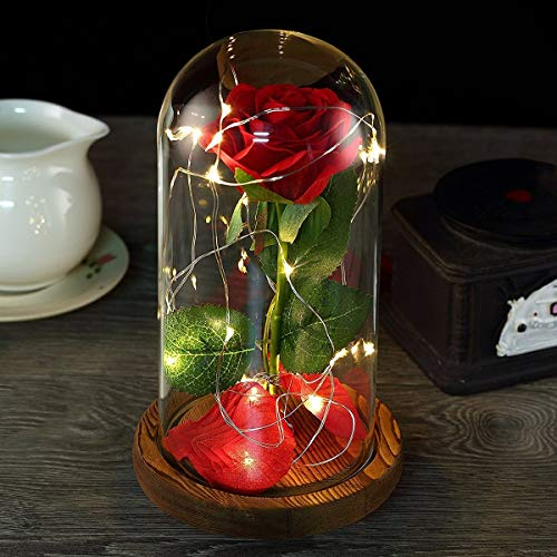 Beauty and the Beast Rose,Red Rose and LED Light in a Glass Forever Gifts for Her Anniversary Valentine's Day Mother Day Christmas Holiday Birthday Party ()