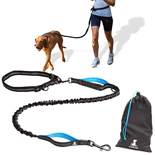 SparklyPets-Hands-Free Dog Leash for Medium and Large Dogs - Professional Harness with Reflective Stitches for Training, Walking and Running Your Pet (Hiking Dog Gear compare prices)