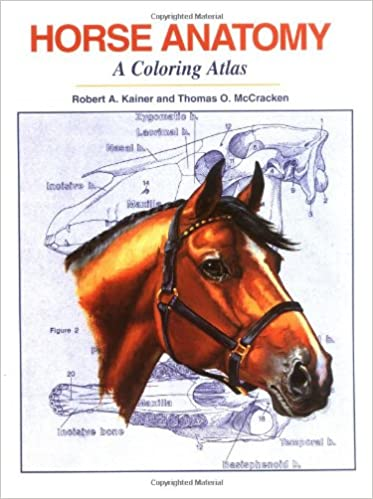 Horse Anatomy: A Coloring Atlas, 2nd Edition: Robert A. Kainer ...