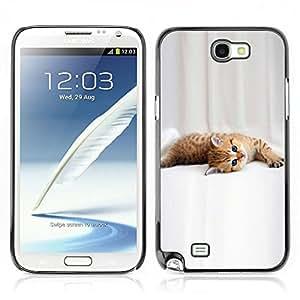 Carcasa Funda Case // V0000930 Cat Kitty Animal Pattern // Samsung Galaxy Note 2 N7100