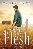 img - for A Heart of Flesh: An Arrow's Flight Novella book / textbook / text book