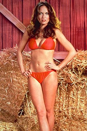 Catherine Bach images 83