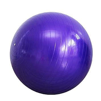 Fitness Pelota de Ejercicio 75CM Balón de Gimnasia Pelota de ...