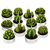 GEESEN Cactus Tealight Candles,Cute Tea Lights Decorative for Wedding Birthday Party Home Decoration 12PCS (cactus candles)