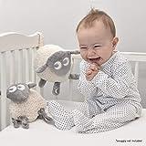 Sweet Dreamers, Ewan The Shushing Sheep - Crib