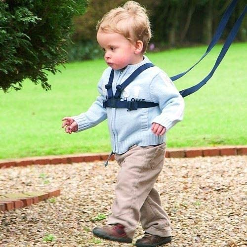 Safe Walking for Toddlers and Little Explorers Black Walking Harness and Reins by TARGARIAN