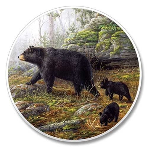 Black Bear Family Stone Auto Car Coaster (Hautman Black Bear)