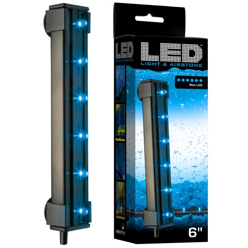ViaAqua6 in 1.8 wattblue led light and airstone