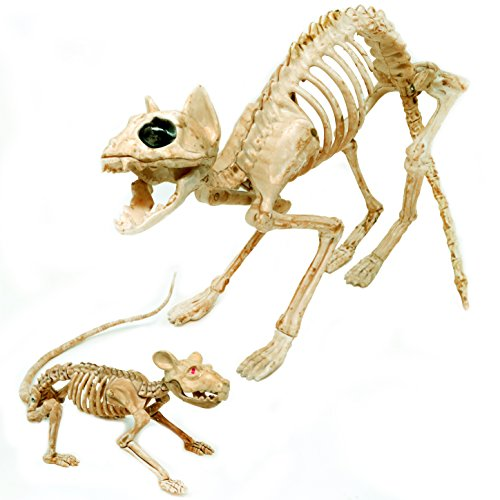 Halloween Skeletons - Spooktacular Creations Skeleton Cat & Rat Skeleton for Halloween Skeleton Animal Decorations, Skeleton Yard Décor and Reaper Bones Animals