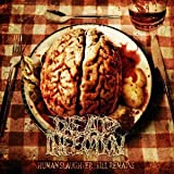 Human Slaughter...Till Remains by Dead Infection (2008-12-13)