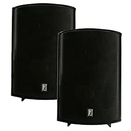 The Amazing Quality PolyPlanar Compact Box Speaker - (Pair) Black