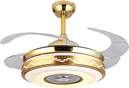 DUOER HOME Ventiladores para el Techo con lámpara Luz de Techo LED ...