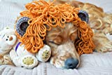 Dog Snood Scarf Lion Outfit Winter Dog's Accessories Ear Coverings Animal Hat Pet Knit Neck Warmer Neckwear for Puppy Wool