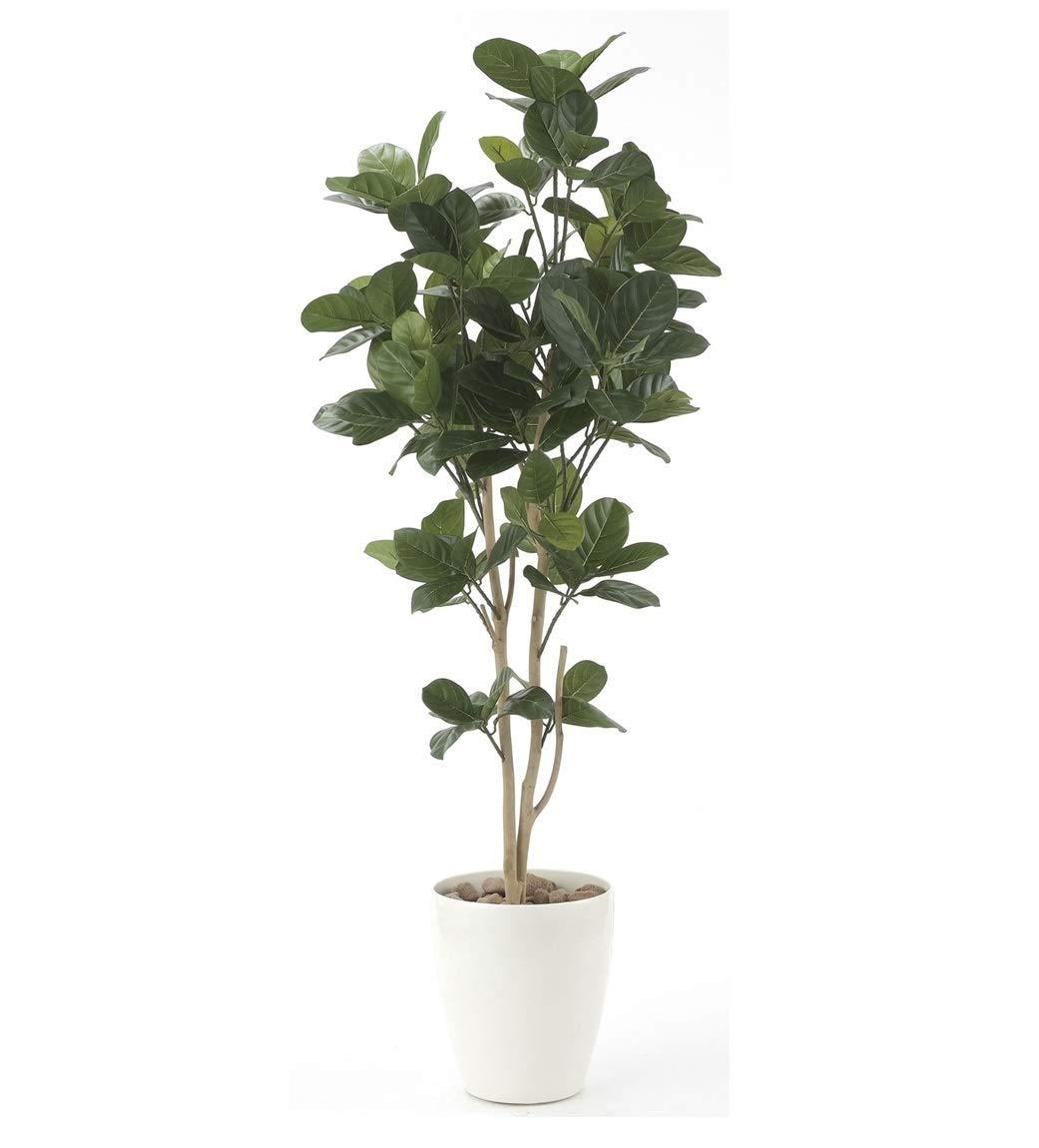 オフィスのエントランス廊下や、お店のアクセントに人工観葉植物 光触媒 光の楽園 パンの木1.25m B07SQVGCDG