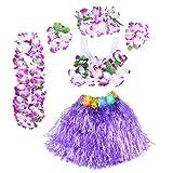 BESTOYARD 6Pcs Tropical Hula Grass Skirt Hawaiian Fancy Dress Costume Set Kids Flower Leis Bracelets Headband Necklace Bra Set 40cm (Purple Skirt)