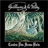Contes Des Sous-Bois by Guillaume De La PILIERE (1997-01-01)