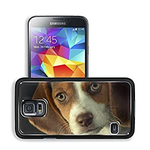 Beagle Puppy Dog Serious Face Samsung Galaxy S5 SM-G900 Snap Cover Premium Aluminium Design Back Plate Case Open Ports Customized Made to Order Support Ready 5 8/16 Inch (140mm) X 3 2/16 Inch (80mm) X 11/16 Inch (17mm) MSD S5 Professional Cases Accessorie by lolosakes