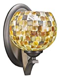 Toltec Lighting 551-GP-407 Zilo Wall Sconce with 6'' Sea Mist Seashell Glass, Graphite Finish