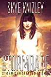 Stormrage (The Storm Chronicles)