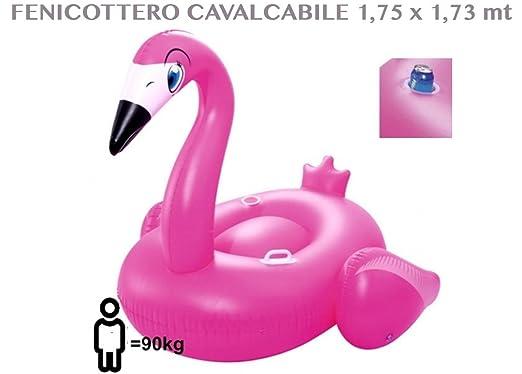 Hinchable y flotador Flamenco montar 1,75 MT X 1,73 cm piscina ...