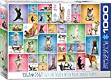 EuroGraphics Yoga Dogs 1000-Piece Puzzle