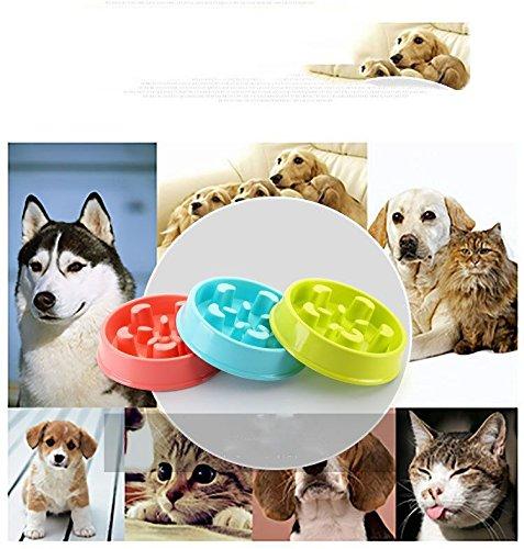 Perro Gato Mascota Taz/ón de Fuente portatil Anti-Gulping Three Musketeer Alimentaci/ón lenta Dise/ño antideslizante Divertida Alimentaci/ón interactiva Gatos y perros Cuenco