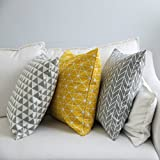 TAOSON Gray/Gay Arrow Geometry Pattern Cotton Flax Soft Home Decorative Throw Cushion Cover Pillow Cover Pillowcase with Hidden Zipper Closure Only Cover No Insert 24x24 Inch 60x60cm
