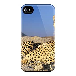 Iphone 4/4s Hard Back With Bumper Silicone Gel Tpu Case Cover A Resting Cheetah