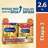 Leche de Crecimiento para Niños mayores de 12 Meses, Enfagrow Premium Etapa 3, En Polvo Paquete especial con 2600 gramos, rinde 67 días