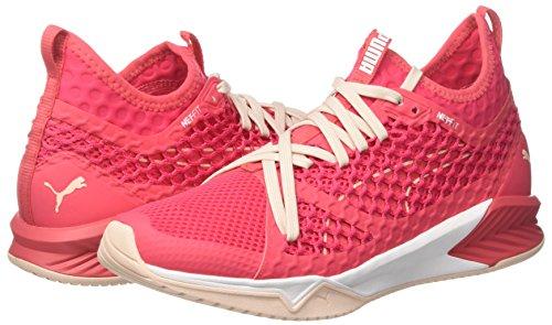 Ignite Sportive Xt Rosa Pink paradise Wn's Netfit Donna Indoor Scarpe White puma Puma SnZaTpa