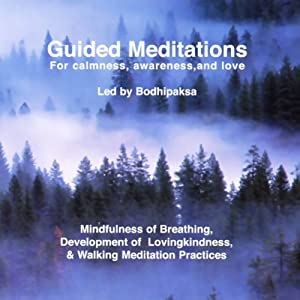 Guided Meditations Audiobook