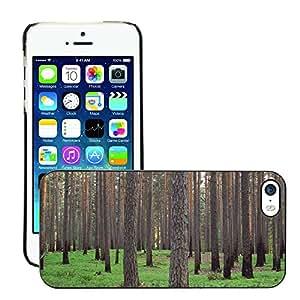 Print Motif Coque de protection Case Cover // M00155742 Fondo de la hierba verde pino Letonia // Apple iPhone 5 5S 5G