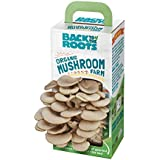 Back To The Roots Organic Mushroom Growing Kit, Harvest Gourmet Oyster Mushrooms In 10 days, Top Gardening Gift, Holiday Gift, & Unique Gift