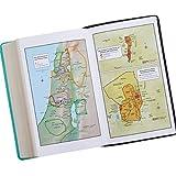 Holy Bible: KJV Giant Print Edition: Two-tone Aqua / Brown (King James Bible)