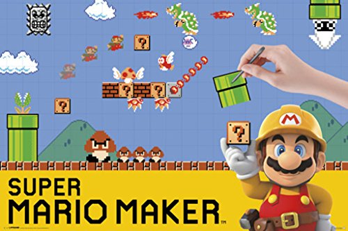 Pyramid America Super Mario Maker Nintendo Wii U Side Scroll
