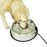 Thermal Bowl Heated Pet Bowl