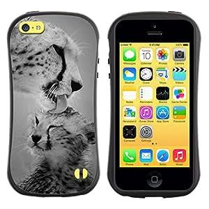 Suave TPU GEL Carcasa Funda Silicona Blando Estuche Caso de protección (para) Apple Iphone 5C / CECELL Phone case / / cub leopard big cat black white nature /