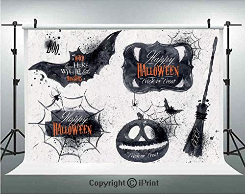 Vintage Halloween Photography Backdrops Halloween Symbols Happy Holiday Witch Lives Here Broomstick Spider Web Decorative,Birthday Party Background Customized Microfiber Photo Studio Props,10x6.5ft,Bl